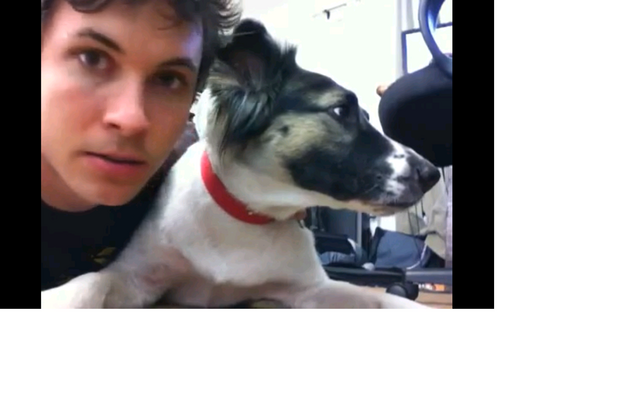 File:Gypsy dog.png