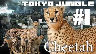 Tokyo Jungle Cheetah Survive over 100 years Part 1 of 4