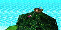 Where is the Bird's Nest?