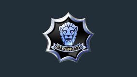 Battlegroup-15-Logo-EFEC