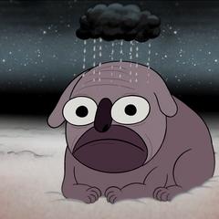 Cloud City Dog