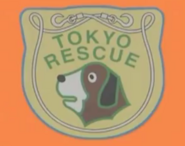 Hyper Rescue Badge
