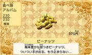 Peanuts jp