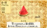 Watermelon jp