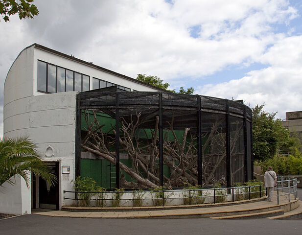 File:Old Gorilla House London Zoo.jpg