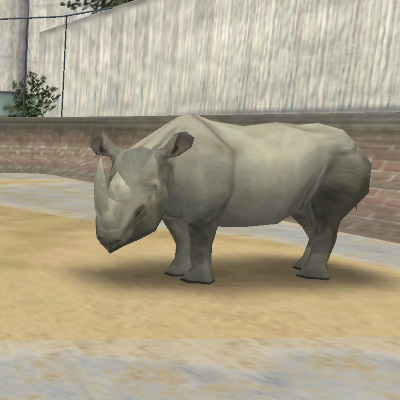 File:Animal Rhino.jpg