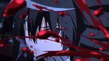 Akame Ga Kill Toonami Teaser