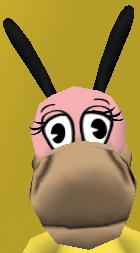 File:Normal horse head.jpg