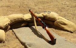 Lee-enfield rifle 3