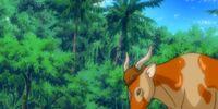 Vaca Barbacoa