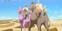 Water Storage Camel