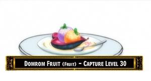 DomromFruit