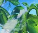 Planta de Cielo