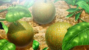 Caramelon Eps 66