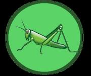 Gingerly Grasshoppers Logo