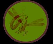 Drifting Dragonflies logo