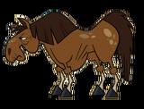 HorseOldBetsy