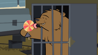 BearLollipop
