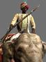 Elephant Musketeers Icon