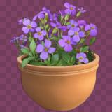 Mem Flowers