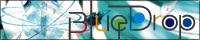 FELT004 Banner