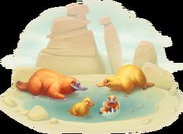 Platypus Family