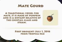 Mate Gourd Artifact