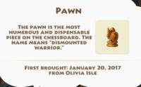 Pawn Artifact