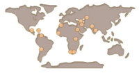 Flamingo map