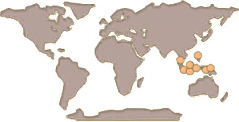 Black Panther Map