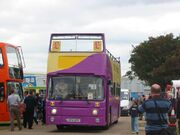 UKIP bus