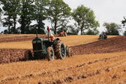 Fordson - (EWP 756) ploughing at Much Marcle 2014 - IMG 1015