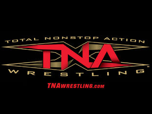 TNA-Logo-professional-wrestling-123479 1024 768