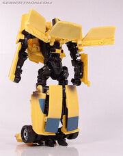 R bumblebee056