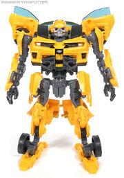 R bumblebee-066