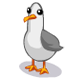 File:Animal seagull.png