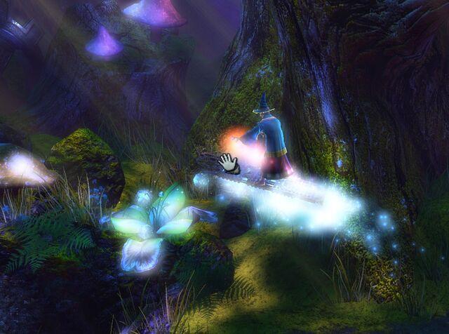 File:Wizard surfing.jpg