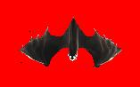 File:Bat closeup.png