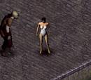 Pervert of Tarant