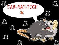 Ear-Rat-Tick2