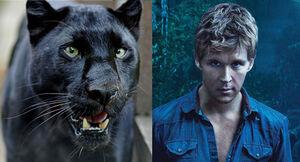 Ryan panther