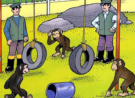 File:Chimps'Playtime5.png