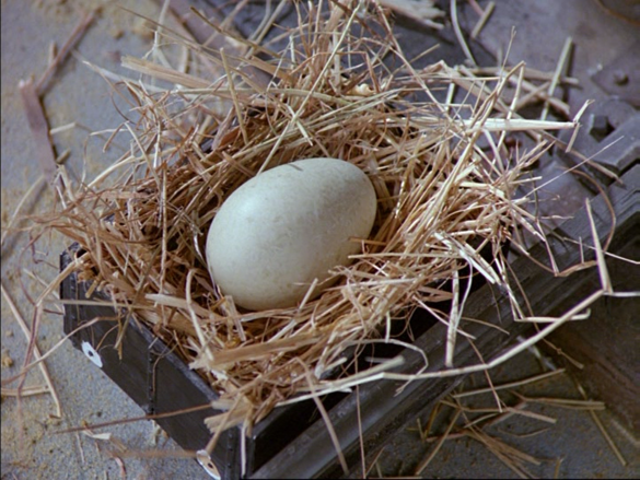 File:Donald'sDuck57.png