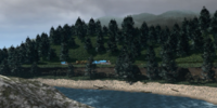 Sea Logs