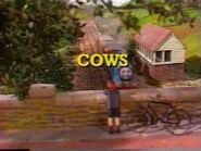 Cows2000UKtitlecard