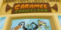 Caramel Caramel Caramel Caramel Caramel Chameleon