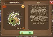 Turtle Bunny 2 (Info)