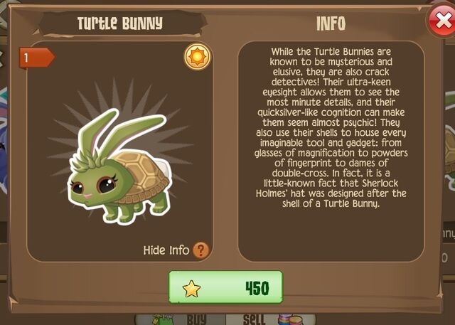 File:Turtle Bunny 2 (Info).jpg