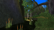 Turok Evolution Levels - Jungle Hunter (9)