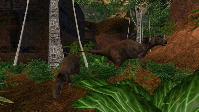 File:Animalia (17).jpg